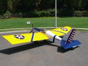 Mini Max built by Randy Lewis
